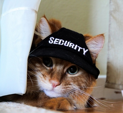security guard.JPG