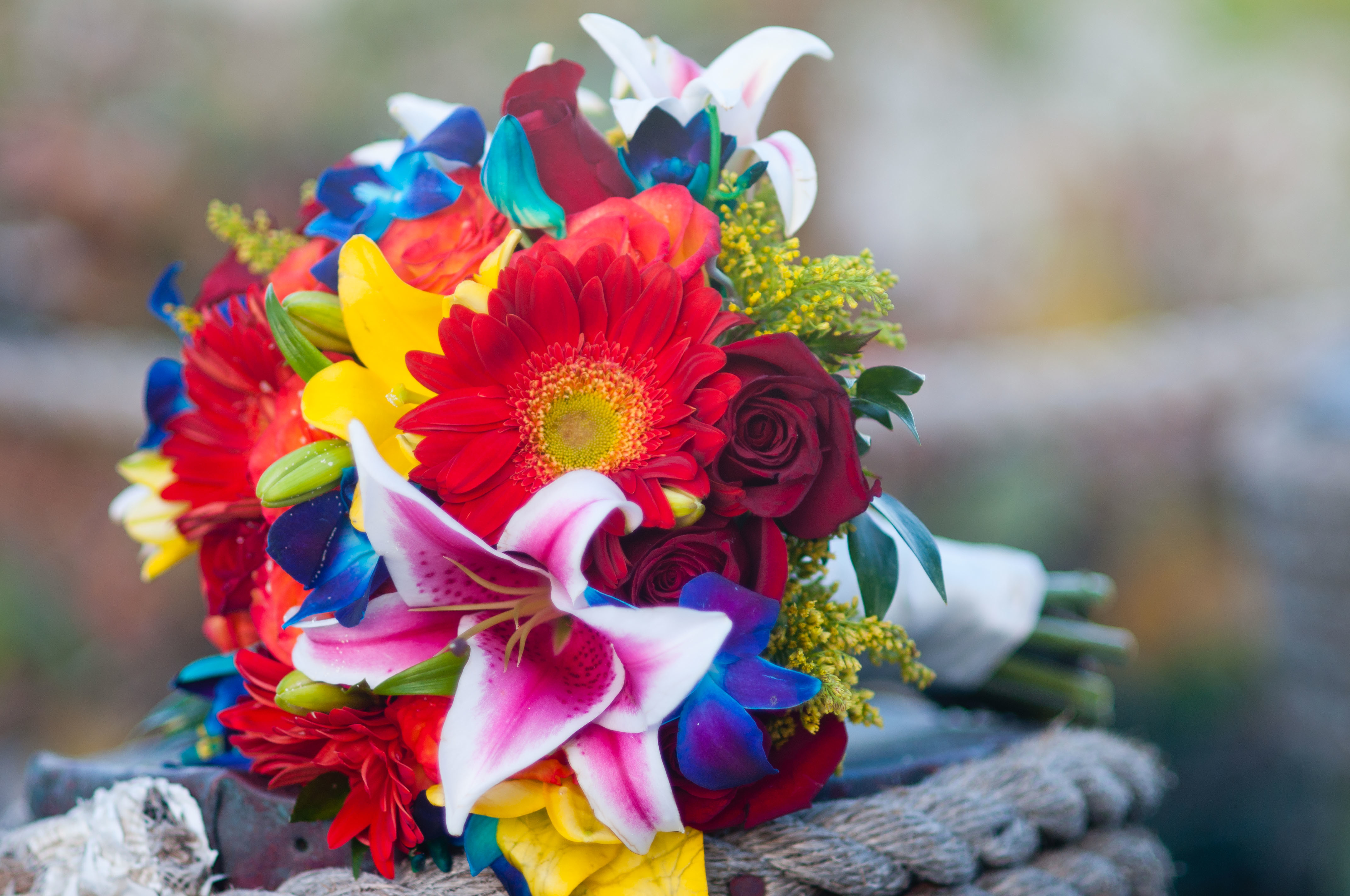 Images about bridal bouquets on pinterest bahamas