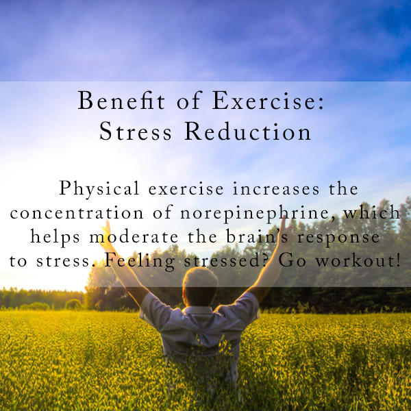 Stress Reduction.jpg