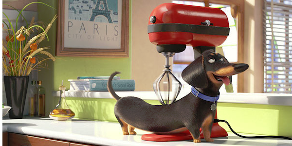 Secret life of pets 24.06.15.png